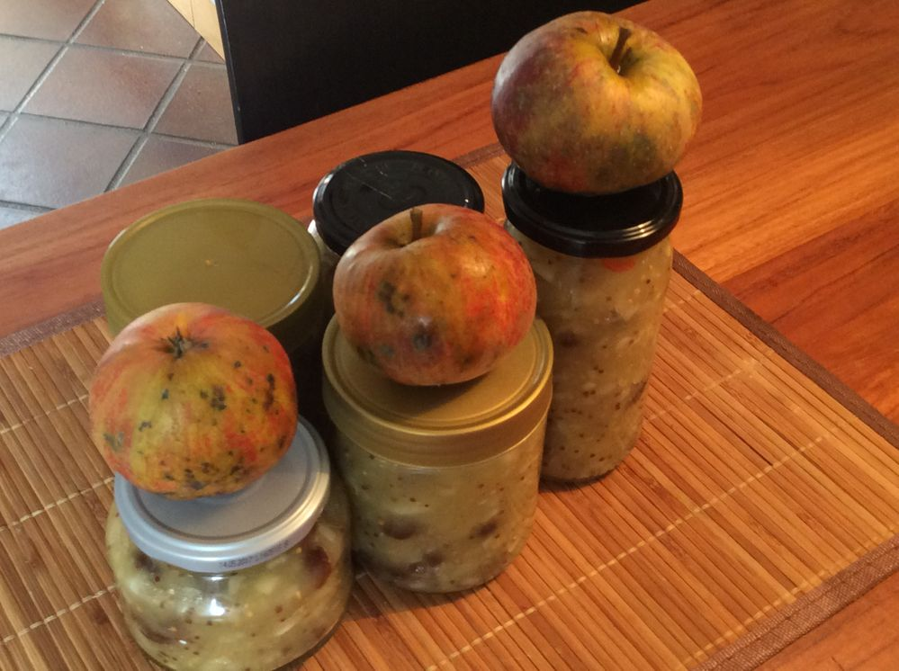 The New Global Airbnb-Cookbook - Indian Apple Chutney