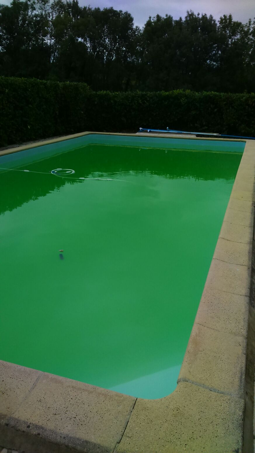 Piscine verte suite aux intemp ries locataire de airbnb community - Ma piscine est verte ...