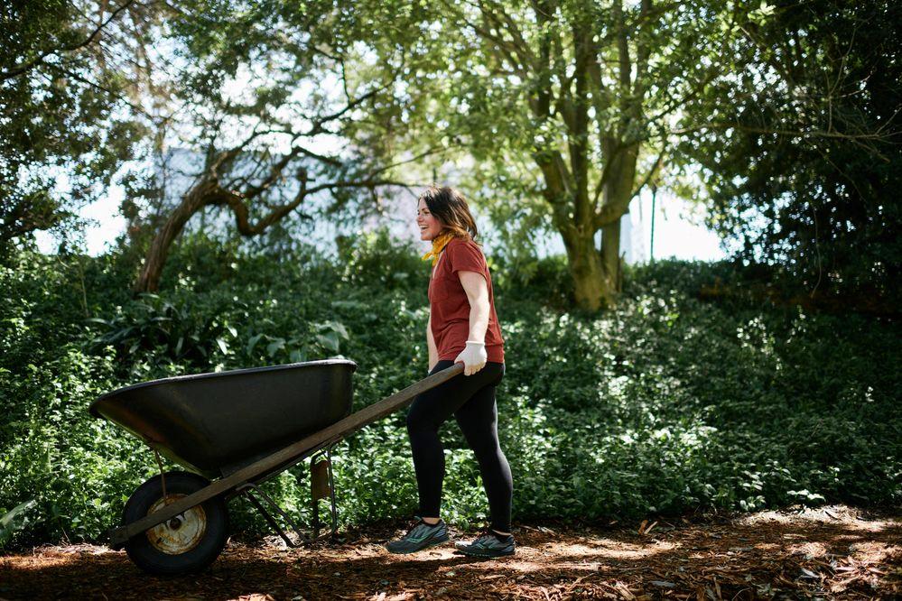 Compartilhem suas dicas de jardinagem!