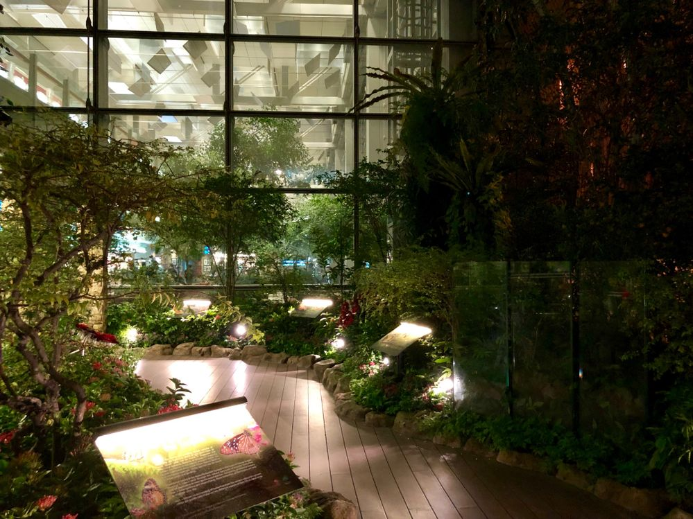 Tour du monde de la communauté d'hôtes d'Airbnb: Carnet de voyage de Lizzie (Jours 8, 9 & 10)