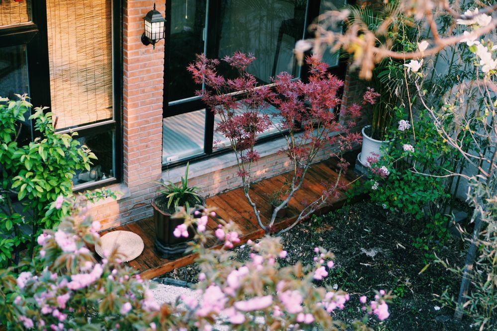 【Airbnb】お部屋の建物タイプ・部屋タイプを正しく入力して、集客力をアップしましょう!
