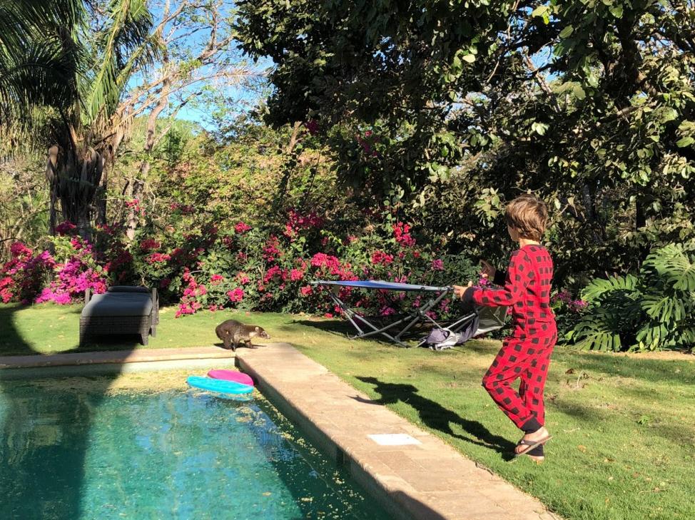 L'un des garçons ravi de découvrir un coati sauvage dans le jardin.