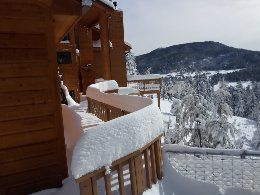 pics of my house in Evergreen, Co