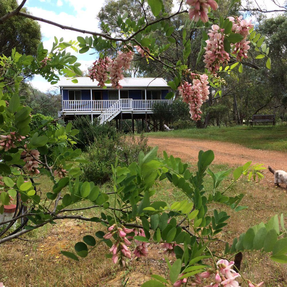 Serenity Cottage at Sanctuary on Avon