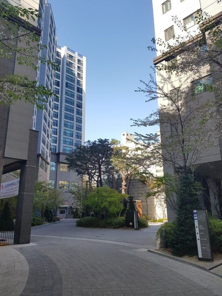 apartment grounds