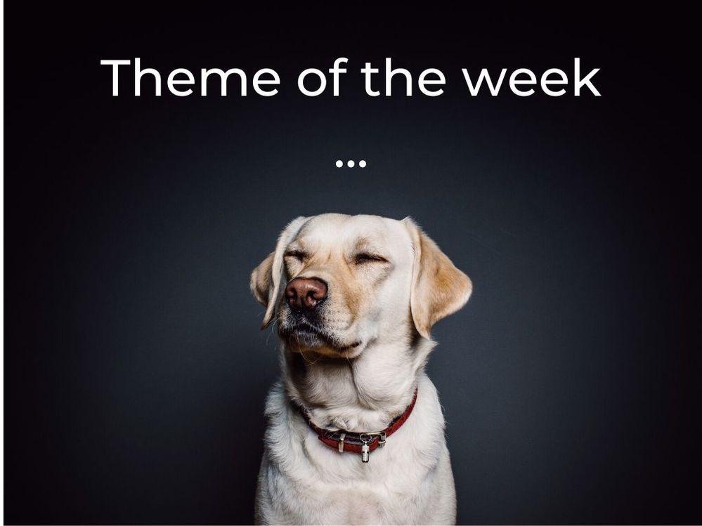 Pet Week.jpg