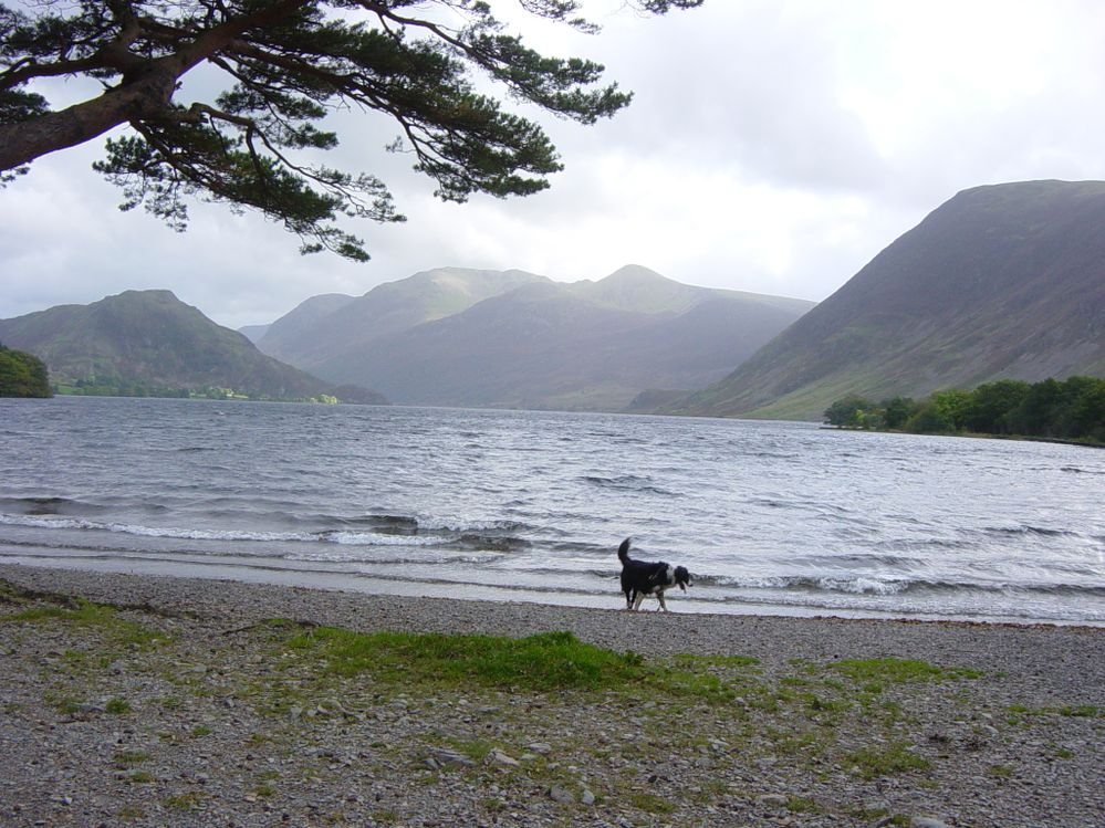 Crummock Water, 12 miles  from home