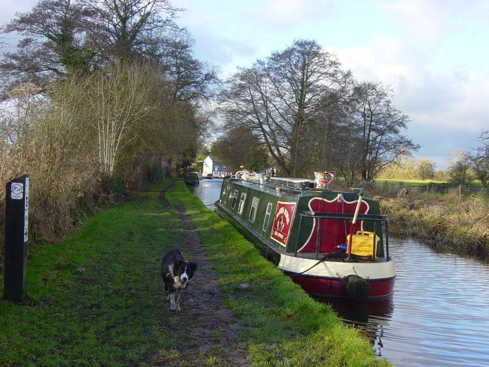 Llangollen Canal, Wrenbury, Cheshire