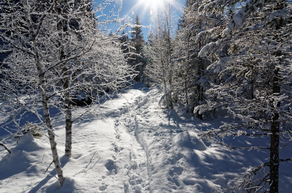 Winterimpression_5.png