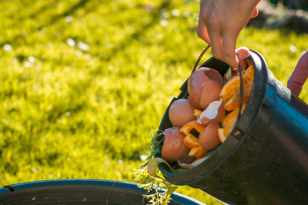 Você encoraja a separação de resíduos em sua acomodação?