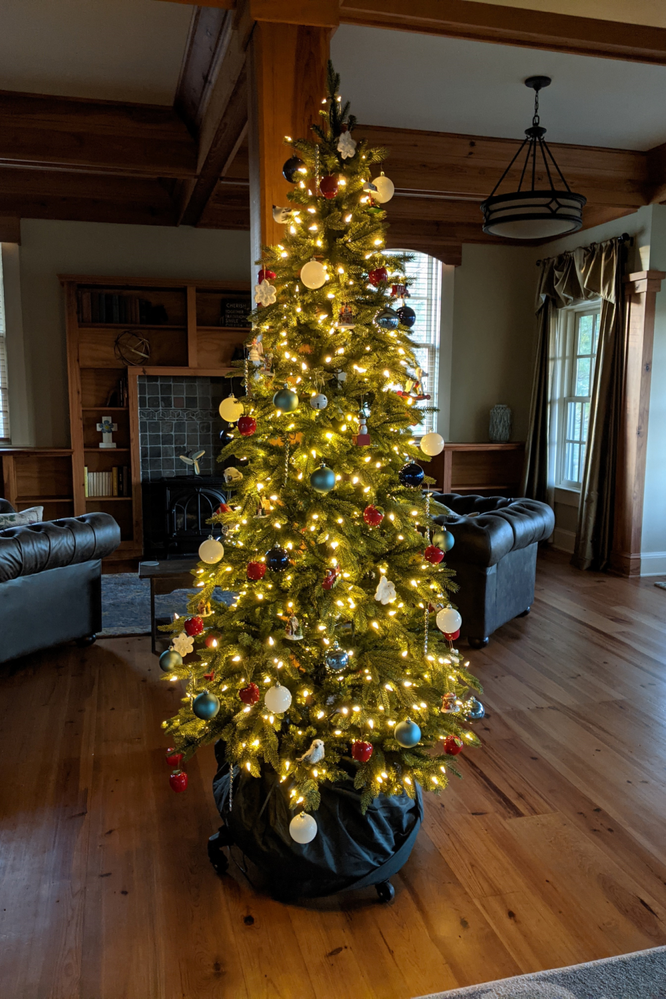 Classic tree for the Manor!