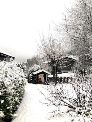 Woke up to snow