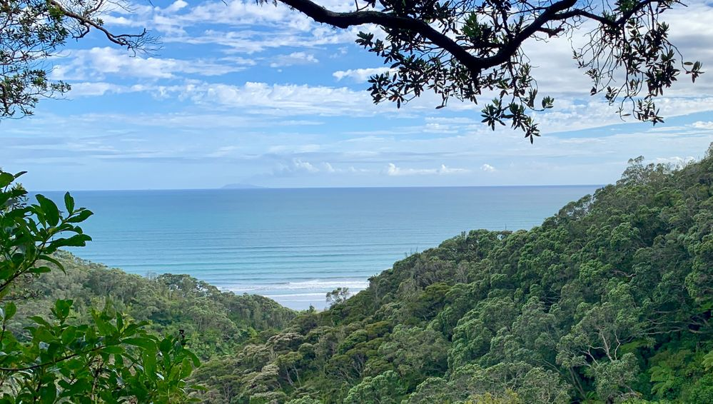 Outlook over the Reserve  towards Ōhope Beach