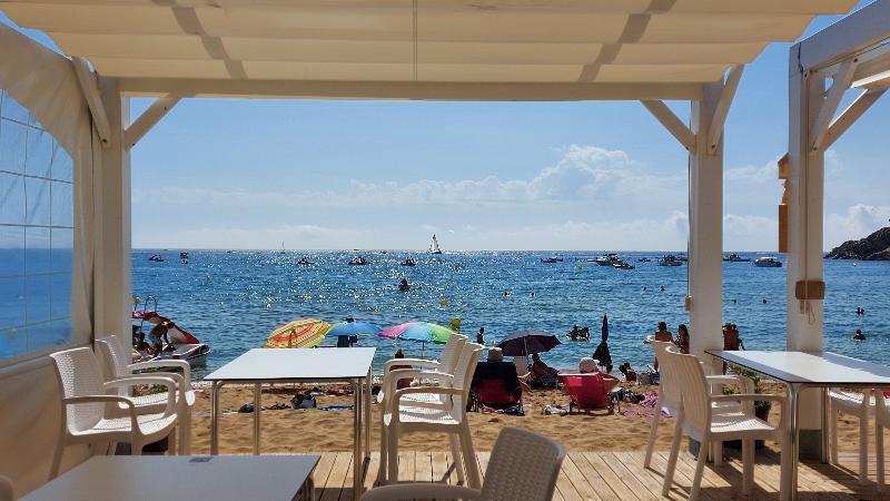 Vermouth facing the sea