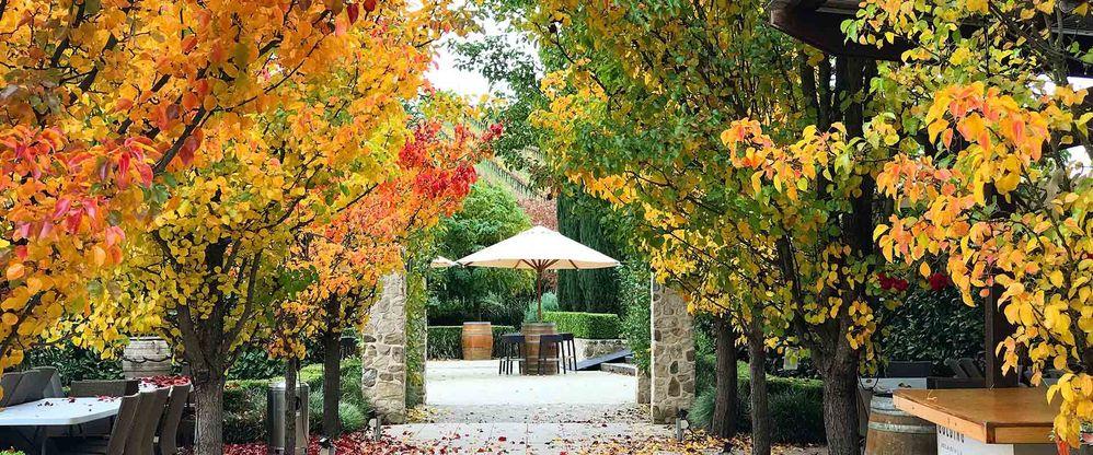 entrance to Golding Wines Cellar door Hahndorf