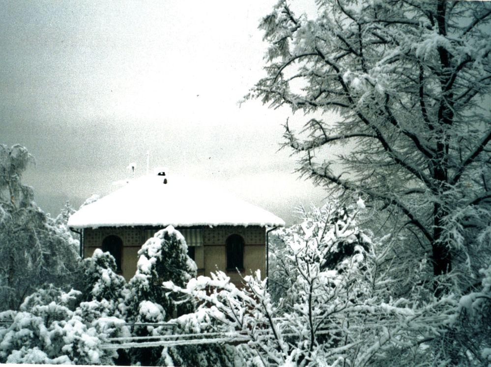 Dagnente con la neve.jpg