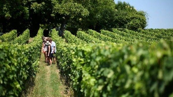 À la découverte de Bordeaux