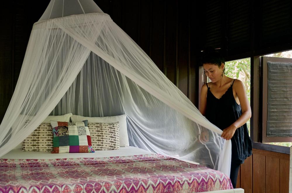 ¿Cómo proteges tu casa de los mosquitos?