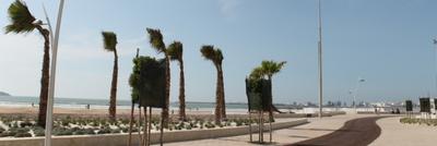 EssaouiraBeachlifeMoro0_0-1631134822865.png
