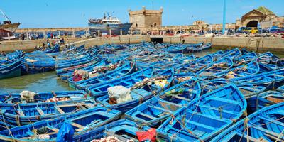 EssaouiraBeachlifeMoro0_3-1631135417372.png