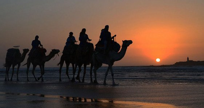 EssaouiraBeachlifeMoro0_7-1631136474604.png