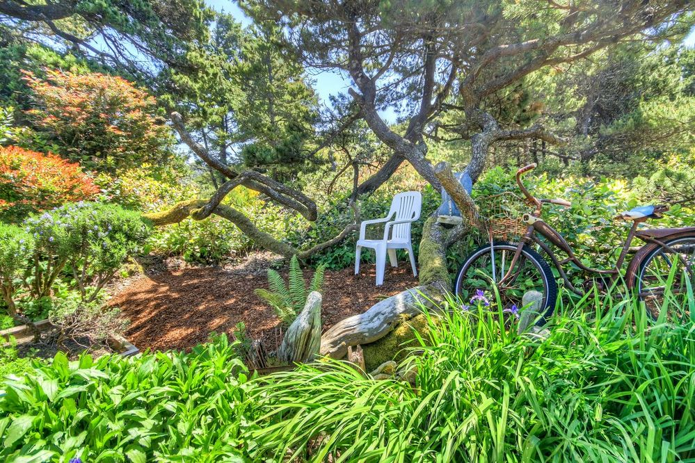 chair-bike-garden.jpg